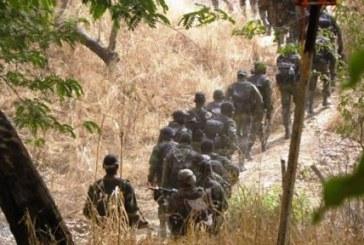 Cameroun anglophones: des forces de sécurité camerounaises présentes au Nigeria