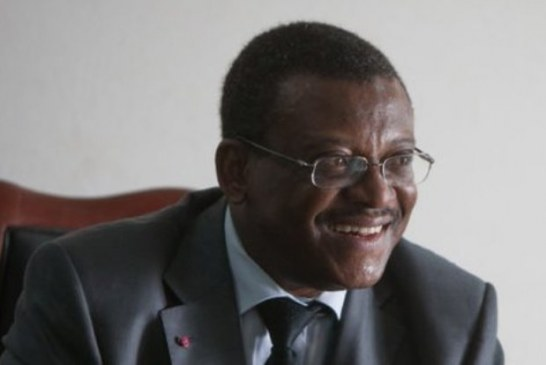 Cameroun : les solutions du Gouvernement face à la pression des importations