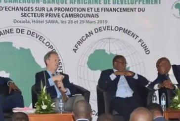 FINANCEMENTS : Célestin Tawamba secoue la BAD