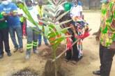 ENVIRONNEMENT : Nestlé Cameroun plante 200 arbres à Douala 4è